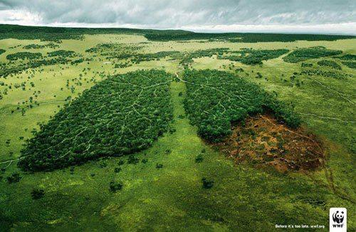 WWF Emotional Ad